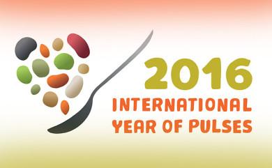 Il 2016 Anno Internazionale dei legumi per la FAO: fagioli, fave, piselli, lenticchie in primo piano